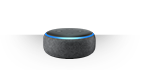 Amazon Echo Dot - goodie
